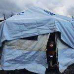 El drama de los refugiados continúa, Remar S.O.S 2018