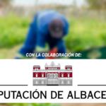 Remar Castilla la Mancha tiene abiertas sus puertas las 24 horas