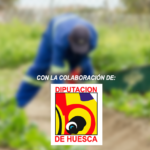 """""""Mejora de la seguridad alimentaria, autoabastecimiento y autoconsumo para jóvenes de la Aldea de Bougoum. Distrito de Koutere. Comunidad V, Niamey, Níger"""""""